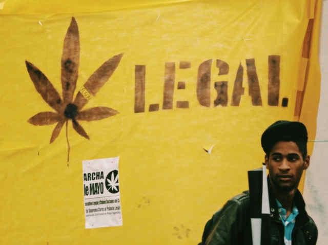 pasaulinis kanapių maršas, globalus marihuanos maršas